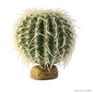 Barrel Cactus large