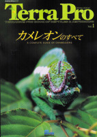 A complete guide to Chameleons