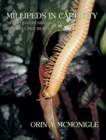 Millipedes in captivity