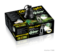 Glow Light Halogen