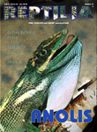 Reptilia Nr 15