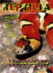 Reptilia nr 17