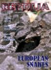 Reptilia Nr 22