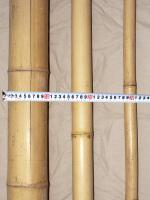 Bamburör Diam. 3-5cm.